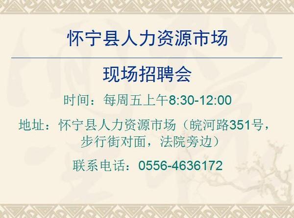 怀宁县人力资源市场招聘会.jpg