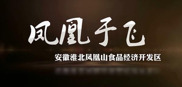 凤凰山食品经济开发区宣传片